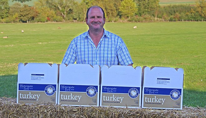 david-turkey-boxes-660x380