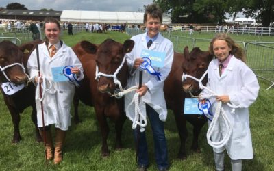 Success at the Suffolk Show!